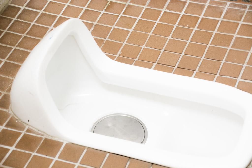 Japanesestyle_toilet